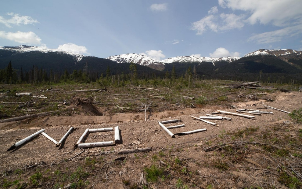 "On Unist'ot'en territory, a large sign made of wood warns aircraft, ""No pipelines, no entry."" Photo: Michael Toledano"
